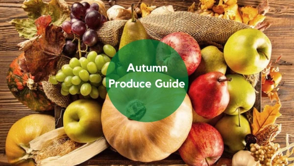 Autumn Produce Guide